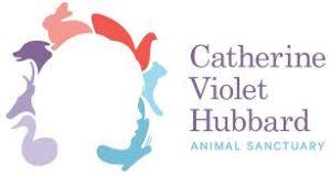 catherine hubbard